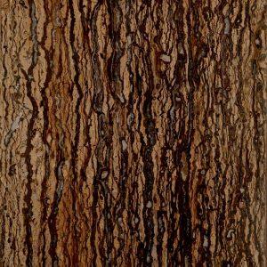 تراورتن تنه درختی-سنگ افرند